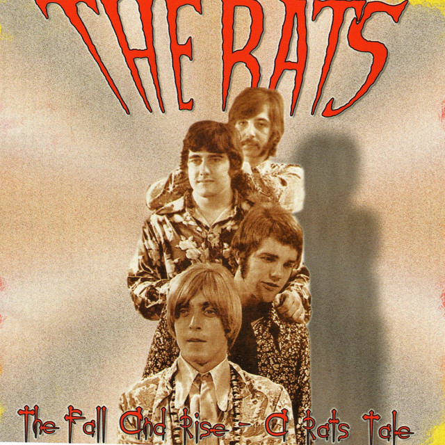The Rats The Fall and Rise.. A Rats Tale album cover