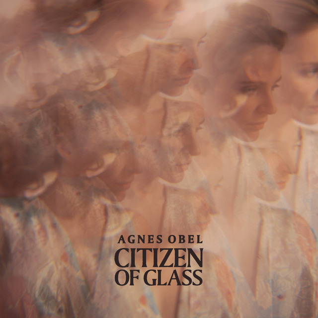 Album cover for Citizen of Glass by Agnes Obel