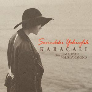 Sesindeki Yalnızlık (feat. Cem Adrian & Melis Danişmend) Albümü