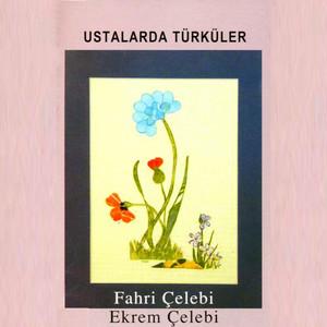 Ustalarda Türküler Albümü