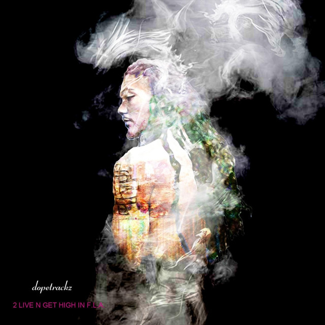 Album cover for 2 Live n Get High in F.L.A. by Dopetrackz