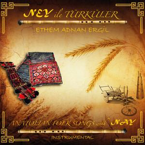 Ney İle Türküler (Enstrumantal) Albümü