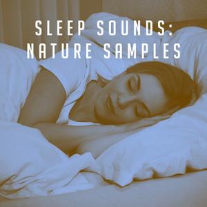 Sleep Sounds: Nature Samples Albümü