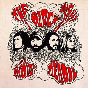 The Black Angels Don't Play With Guns cover