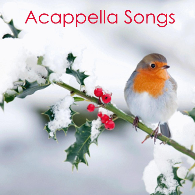 Acapella Groups - Acapella Songs Christmas by Acapella on