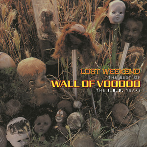 Lost Weekend, the Best of Wall of Voodoo (The I.R.S. Years) album