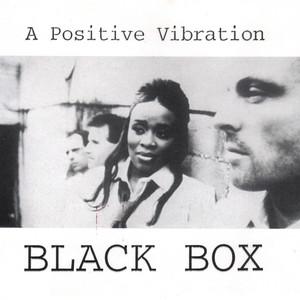A Positive Vibration Albumcover