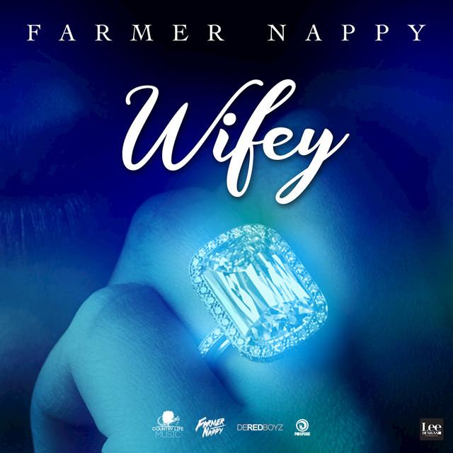 Farmer Nappy