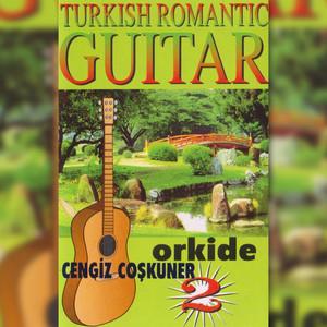 Orkide, Vol. 2 (Turkish Romantic Guitar) Albümü