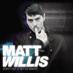 Don't Let It Go To Waste - Matt Willis