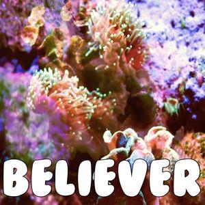 Believer (Tribute to Imagine Dragons) Albümü