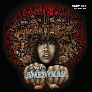New Amerykah Part One (4th World War) Albumcover