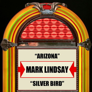 Arizona / Silver Bird