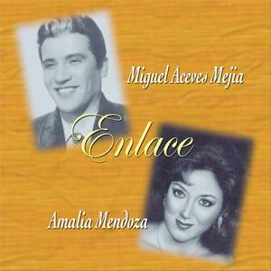 Enlace - Miguel Aceves