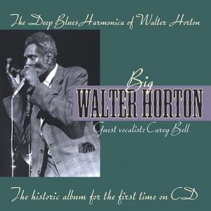 Big Walter Horton Walking By Myself cover