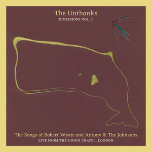 The Songs of Robert Wyatt and Antony & The Johnsons (Diversions Vol. 1) - Live From the Union Chapel, London album