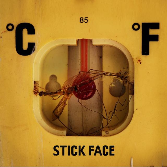 Stick Face