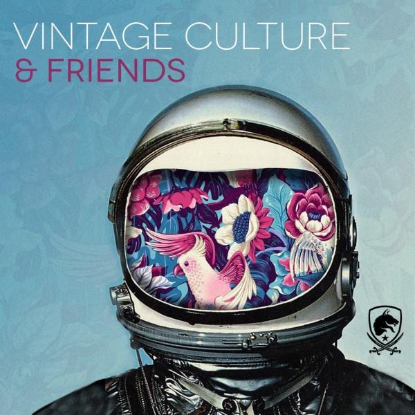 Vintage Culture & Friends