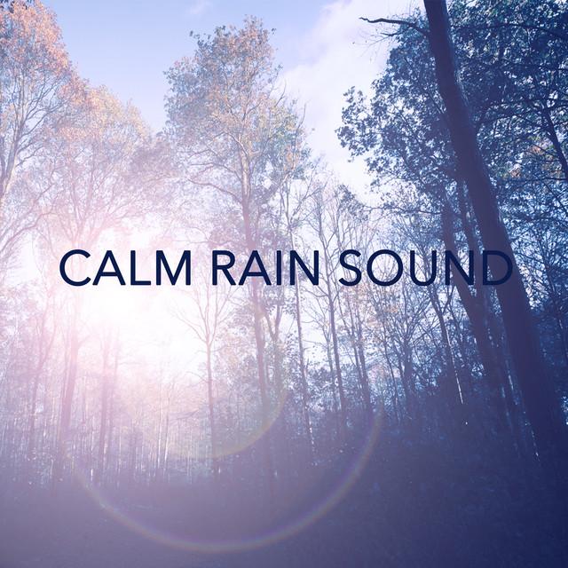 Calm Rain Sound Albumcover