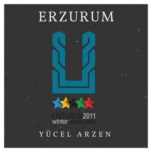 Erzurum Albümü