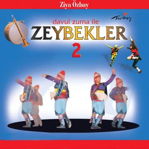 Davul Zurna ile Zeybekler 2 Albümü