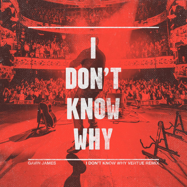 I Don't Know Why (Vertue Remix [Radio Edit])