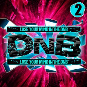 D'n'b, Vol. 2 album