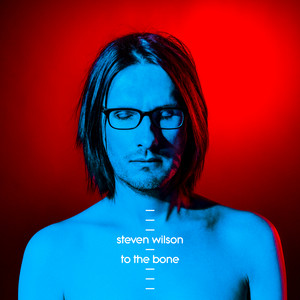 Steven Wilson Permanating cover