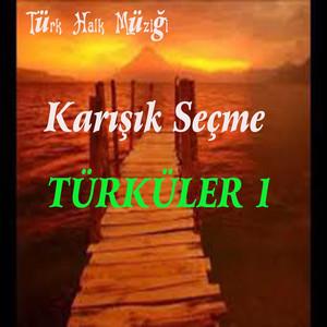 Karışık Seçme Türküler, Vol. 1 (Türk Halk Müziği)