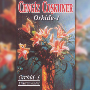 Orkide, Vol. 1 (Orchid - 1 Entrümental) Albümü
