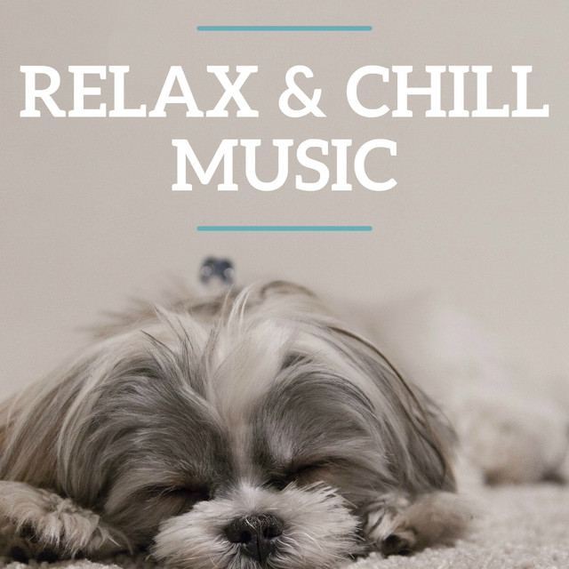 Relax & Chill Music