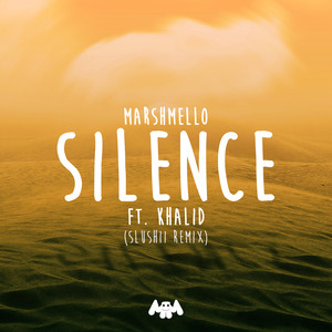 Silence (Slushii Remix) Albümü