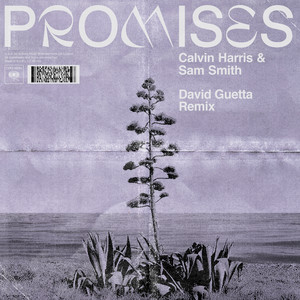 Promises (with Sam Smith) [David Guetta Remix]