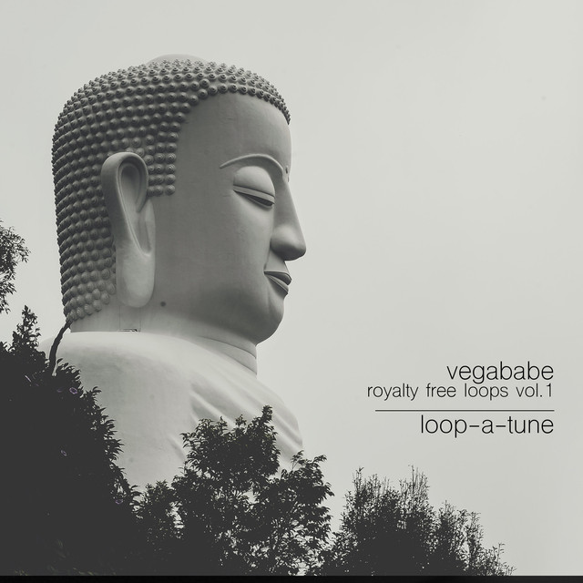 Royalty Free Loops Vol 1 by Vegababe on Spotify