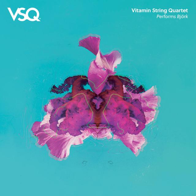 Vitamin String Quartet Performs Bjork
