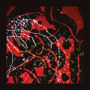Nerve Net Albumcover