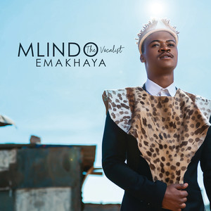 Key & BPM for Nge Thanda Wena (feat  Sha Sha) by Mlindo The