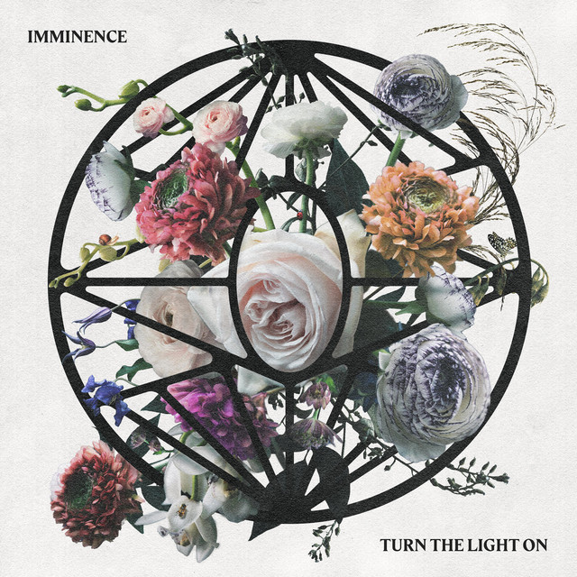 Album cover for Turn the Light On by Imminence