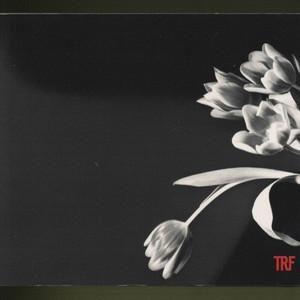 UNITE album