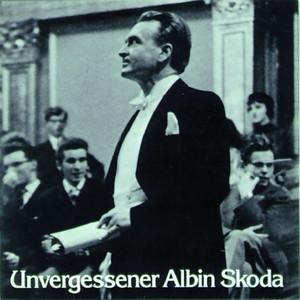 Unvergessener Albin Skoda Audiobook