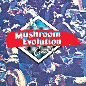 The Mushroom Evolution Concert - The Swingers