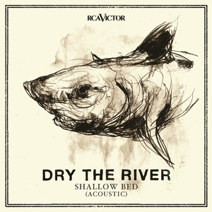 Dry The River, Shield Your Eyes - Acoustic på Spotify