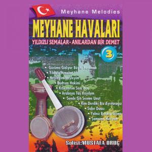 Meyvane Havaları, Vol. 3 (Anılardan Bir Demet - Yıldızlı Semalar) Albümü