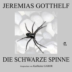 Die schwarze Spinne Audiobook