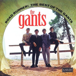 Road Runner! The Best of the Gants album