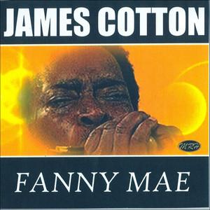Fanny Mae album