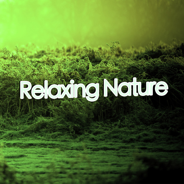 Relaxing Nature (Rain)