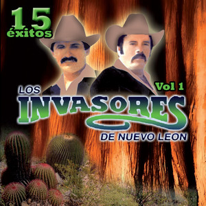 15 Éxitos, Vol. 1 album