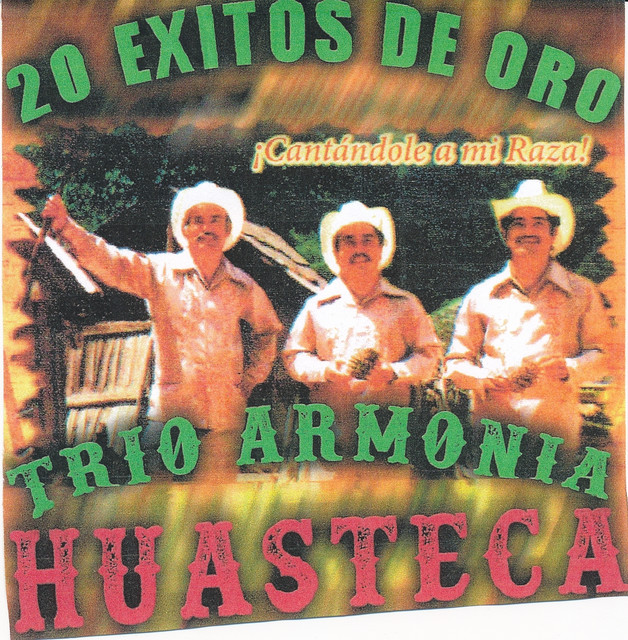 Album cover for 20 Exitos De Oro by Trio Armonia Huasteca