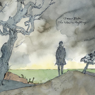 Album cover for The Color in Anything by James Blake
